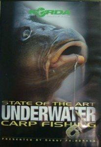 Підводний лов коропів 6