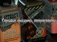 Коропові підгодовування, аттрактанты