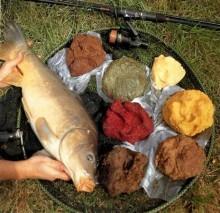 Кращі коропові інгредієнти й добавки для принад