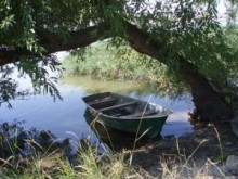 Карпо із човна