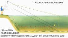 5 уловистих способів проводки джиг- принад